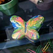 Colorfly Marbled Butterfly Box